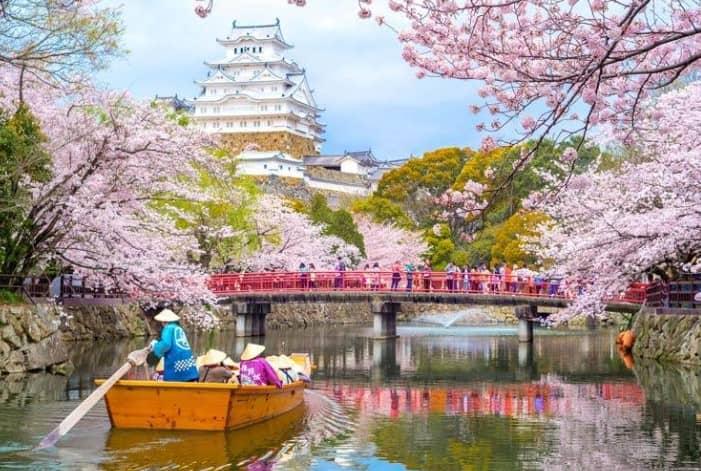 Planning To Visit Japan